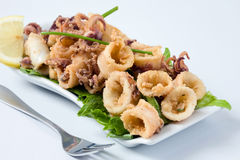 Seafood. Deep fried calamari with letucce and lemon royalty free stock photos