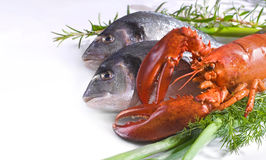 Seafood Stock Photos