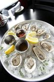 Seafood appetizer with oysters Stock Photo