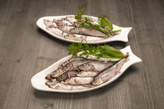 Seafood appetizer sprat Royalty Free Stock Photos