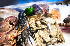 Seafood assortment on ice at the fish market stall close up.  Royalty Free Stock Photography
