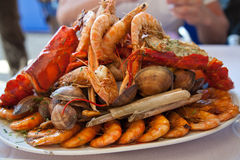 Seafood assortment Stock Photography