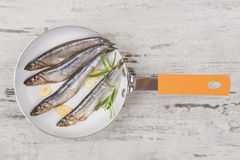 Seafood background. Royalty Free Stock Images