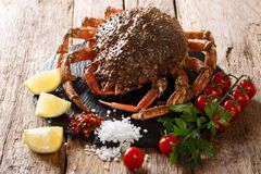 Seafood background: raw edible spider crab with ingredients close-up on a wooden table. horizontal. Seafood background: raw edible spider crab with ingredients royalty free stock photos