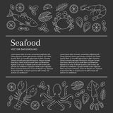 Seafood background, vector. Seafood background. Vector flat line illustrations of lobster, crab, salmon, fish, squid, oyster, shrimp, octopus. Seafood banner Royalty Free Stock Photos