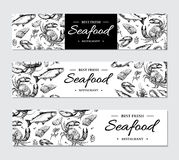 Seafood banner vector template set. Hand drawn illustration. Crab, lobster, shrimp, oyster, mussel,. Caviar and squid. Engraved style Fish and sea food Stock Photo