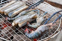 Seafood or barbecued seafood. Barbecued shrimp stock photography