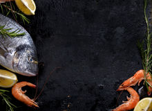 Seafood on black background Stock Photography