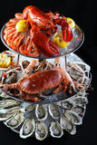 Seafood buffet with lobster, oyster, crabs and mantis shrimps on. Ice tray in black background deliciously Stock Photos