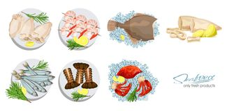 Seafood in cartoon style. Seafood platter set squid, cuttlefish, crab, shrimp, spiny lobster, flounder fish, sprat on. Seafood in cartoon style. Vector Royalty Free Stock Photos