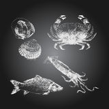 Seafood chalkboard drawing sketch set. Black chalkboard with hand drawn seafood icons set Stock Images