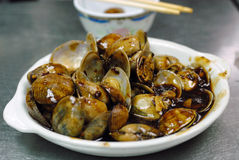 Seafood clam Royalty Free Stock Photos