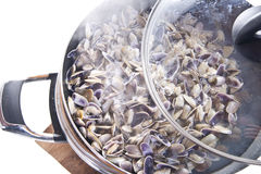Seafood, clams. Steam seafood prepared as a basis for spaghetti royalty free stock photo