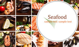 Seafood collage Royalty Free Stock Photos