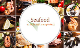 Seafood collage Stock Photos