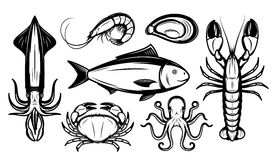 Seafood Collection Isolated on White Stock Photo