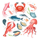 Seafood collection set Royalty Free Stock Photos