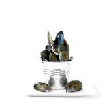Seafood Concept II Royalty Free Stock Images