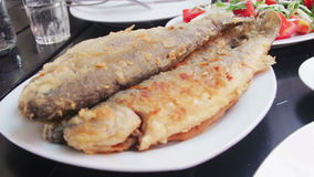 Seafood Cooked Fried Fish Trout on a Plate in a Restaurant stock video