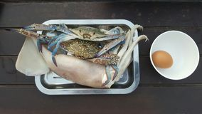 Seafood for cooking Royalty Free Stock Photography