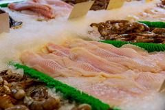 Seafood counter display of fish. White cod and tilapia fillets Royalty Free Stock Images