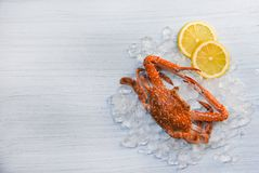 Seafood crab boiled cooked lemon and ice on white wooden background Blue Swimming Crab royalty free stock photo