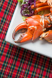 Seafood Crab Claw. Close-up of Seafood Crab Claw Royalty Free Stock Photo