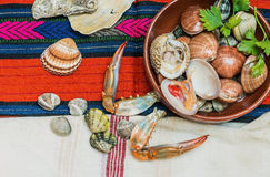 Seafood with crab claws and shells . Royalty Free Stock Photo