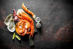 Seafood. Crab, shrimp, oysters, baby octopus on a cutting Board with spices and lime slices stock images