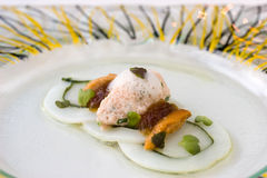Seafood with crab, urchin, squid and scallop Stock Images