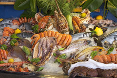 Seafood, crustaceans and fish royalty free stock photography