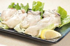 Fresh and tasty seafood cuisine royalty free stock photography
