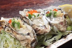 Fresh and tasty seafood cuisine. Seafood cuisine of shrimp, abalone, squid, mussel, oyster or scallop Royalty Free Stock Photos