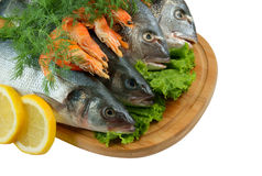 Seafood on cutting board isolated Stock Images