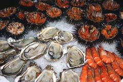 Seafood decoration 2 Royalty Free Stock Images