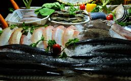 Seafood and different fish on ice at market.  Royalty Free Stock Photo