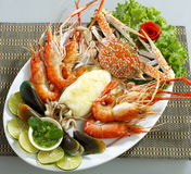Mix seafood dish isolated  Stock Image