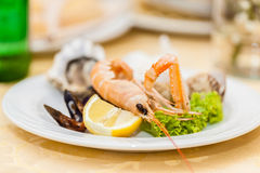 Seafood dish Royalty Free Stock Images