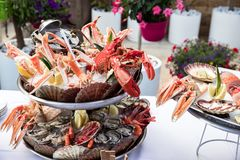 Seafood dish served on the restaurant table. Creative restaurant meal concept, haute couture food. Selection of fresh seafood mix. Appetizing seafood platter Royalty Free Stock Images