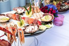 Seafood dish served on the restaurant table. With flowers, creative restaurant meal concept, haute couture food. Selection of fresh seafood mix. Appetizing Royalty Free Stock Photography