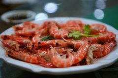 Boiled red shrimp served on a white dish with blue trim. stock images