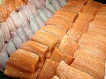 Seafood display case. View at the display case of fish, seafood and marine products in the store Stock Photography