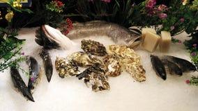 Seafood on display Stock Images