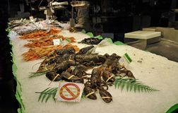Seafood on display at the market  Royalty Free Stock Images