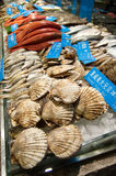 Seafood display in market Stock Photography