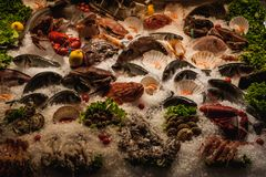 Seafood displayed on ice in front of restaurant Stock Photo