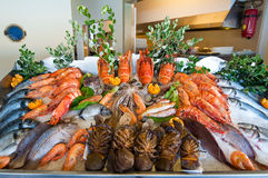 Seafood displayed at the local restaurant on the island of Crete, Greece. Royalty Free Stock Photo