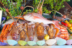 Seafood displayed for sale on the Crete island, Greece. Royalty Free Stock Image