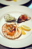 Seafood Entr�e. Plate of various Seafood served as Entr�e Royalty Free Stock Photography