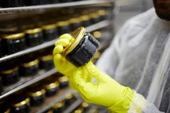 Caviar quality control Stock Images